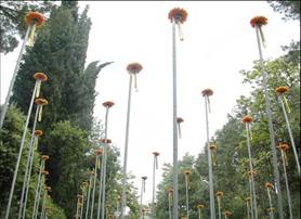 Exposición en temps de Flors, Girona